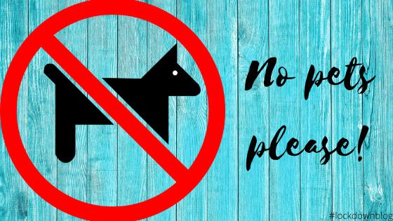 No Pets AllowedPlease!